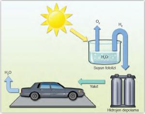 Şekil 4.2 Hidrojen, suyun fotolizi ile de elde edilmektedir.