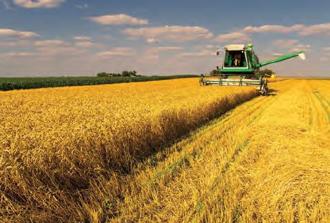 Fofoğraf 1.1.10 Tarım etkinliklerini tarım coğrafyası incelemektedir.
