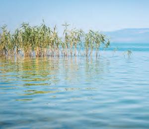 Fotoğraf 1.131 İznik Gölü (Bursa)