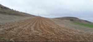 Fotoğraf 1.169 Kahverengi bozkır toprağı