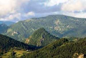 Fotoğraf 1.28 Kuzey Anadolu Dağlarından bir görünüm (Küre Dağları)