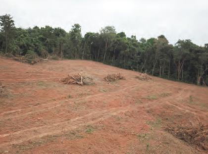 Fotoğraf 1.28 Ormanların tahrip edildiği yerlerde yer altı suyu azalır.