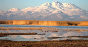 Fotoğraf 1.30 Sultan Sazlığı ülkemizdeki sulak alanlardan biridir.