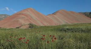 Fotoğraf 1.5.38 Ülkemizde sert karasal iklimin etkili olduğu yerlerde çayırlar görülür.
