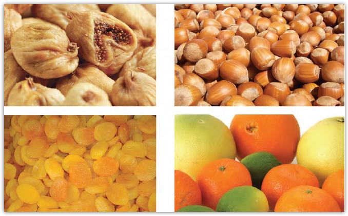 Fotoğraf 2.111 Türkiye'de yeterlilik oranı en yüksek olan ürünler incir, fındık, kayısı ve turunçgillerdir.
