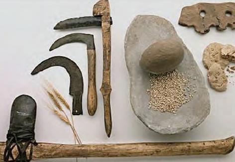 Fotoğraf 3.53 Neolitik Dönem'de tarım, daha çok basit araç ve gereçlerle yapılıyordu.