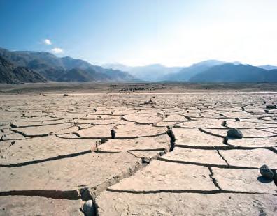 Fotoğraf 4.20 Kuraklık, biyoçeşitlilik ve ekonomik olarak olumsuz etkileri olan bir afettir (Hindistan).