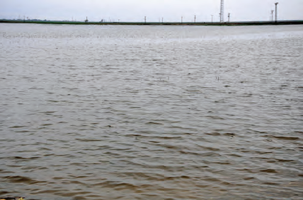 Fotoğraf 4.23 Kurutulan Amik Gölü'nün bulunduğu yer, zaman zaman sular altında kalmaktadır.
