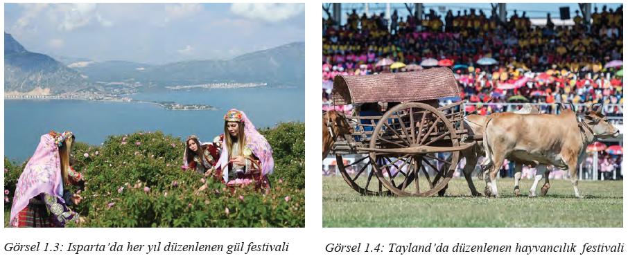 Görsel 1.3 Isparta'da her yıl düzenlenen gül festivali - Görsel 1.4 Tayland'da düzenlenen hayvancılık festivali