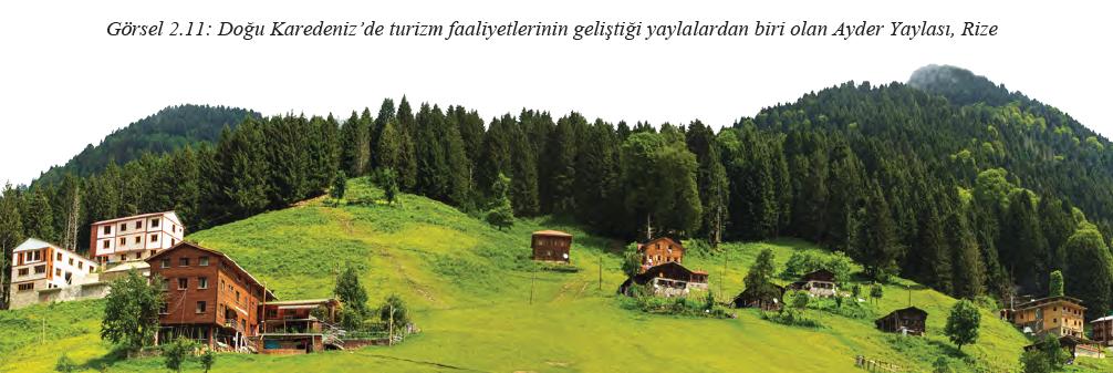 Görsel 2.11 Doğu Karedeniz'de turizm faaliyetlerinin geliştiği yaylalardan biri olan Ayder Yaylası, Rize
