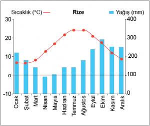 Grafik 1.5.16 Karadeniz ikliminde sıcaklık ve yağışın aylara dağılımı