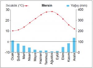 Grafik 1.5.17 Akdeniz ikliminde sıcaklık ve yağışın aylara dağılımı