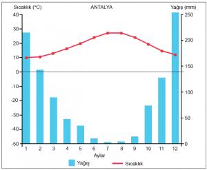 Grafik 1.5.9 Akdeniz ikliminde sıcaklık ve yağış